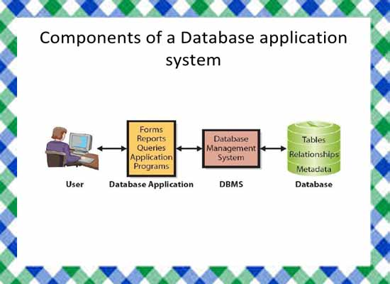 Data Processing and Database Management System