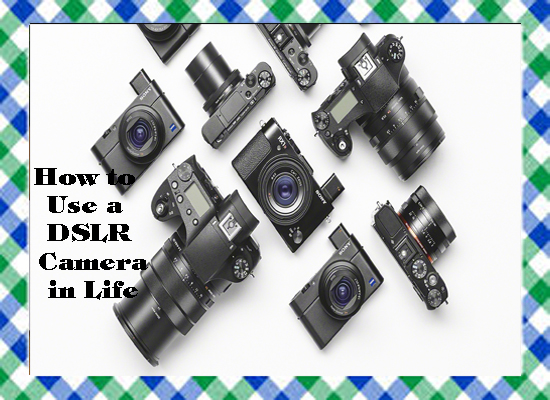 How to Use a DSLR Camera in Life