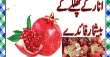 Anar Ke Chilke Ke Fayde in Urdu