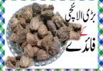 Badi Elaichi Khane Ke Fayde in Urdu
