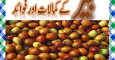 Ber Khane Ke Fayde in Urdu