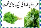 Hara Dhaniya Khane Ke Fayde in Urdu