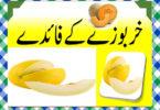 Kharbooza Khane Ke Fayde in Urdu