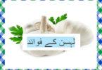 Lehsan ke fayde In Urdu