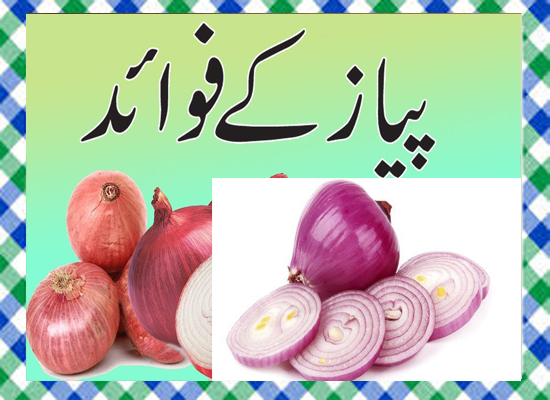 Pyaz Khane Ke Fayde in Urdu