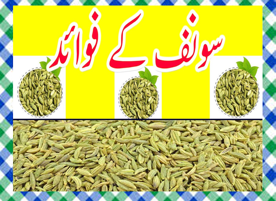 Saunf Khane ke Fayde in Urdu