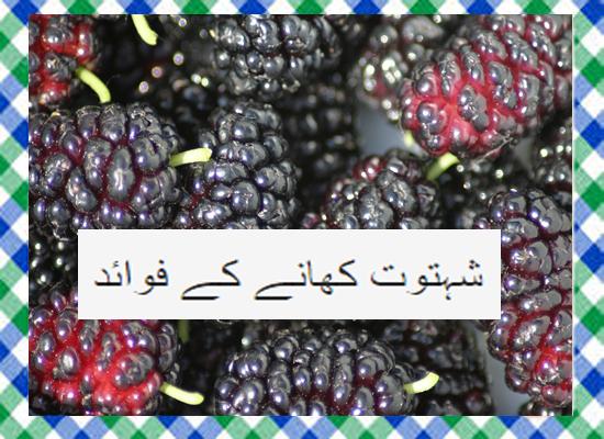 Shahtoot Khane Ke Fayde in Urdu