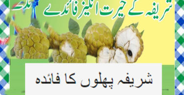 Sharifa fruit benefits In Urdu