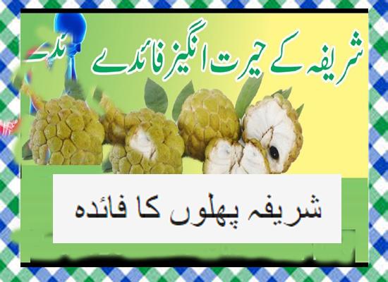 Sharifa fruit benefits In Urdu