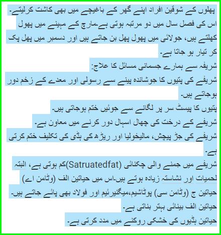Sharifa fruit benefits In Urdua