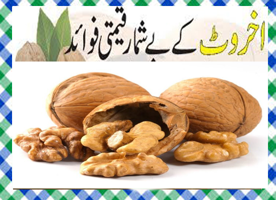 Walnuts Khane Ke Fayde in Urdu