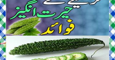karela khane ke fayde In Urdu