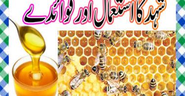 shehd Khane ke Fayde in Urdu