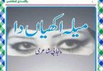 Mela Akhian Da Urdu Novel by Anwar Masood