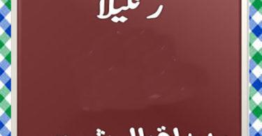 Rangeela Urdu Novel by Muhammad Iqbal Shams