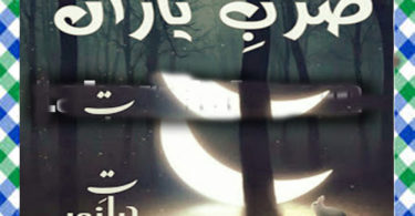 Zarb E Yaran Urdu Novel By Hayat E Noor