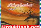 Mere Khawab Mere Jugnoo Urdu Novel By Nimra Ahmad Download