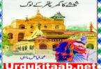 Sheeshay Ka Ghar Pathar Ke Log Urdu Novel By Fayyaz Mahi Download