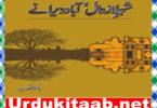 Sher e Lazawal Abad Weeranay Urdu Novel by Bano Qudsia Download