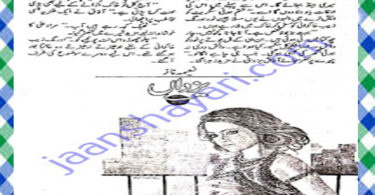 Yazdan Urdu Novel by Naeema Naz