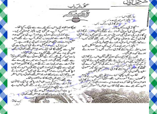 Zarmina Urdu Novel By Gul Arbab