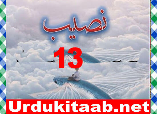 Naseeb Urdu Novel By Biya Talhat Part 13 Download