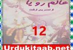 Alam E Roya Urdu Novel By Tehreem Arshad Episode 12 Download