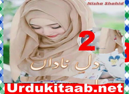 Dil E Nadan Urdu Novel By Nisha Shahid Season 2 Download
