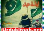 Ifa E Ehad Urdu Novel By Misha Bilal Download