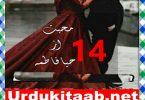 Mohabbat Urdu Novel By Haya Fatima Episode 14 Download
