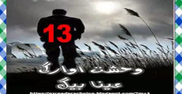 Wehshat E Awargi Urdu Novel By Ayna Baig Episode 13 Download