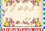 Mein He Ghalat Thi By Ameer Hamza