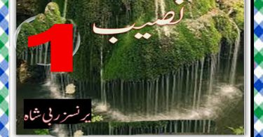 Naseeb Urdu Novel By Princess Rabi Shah Episode 1 Download