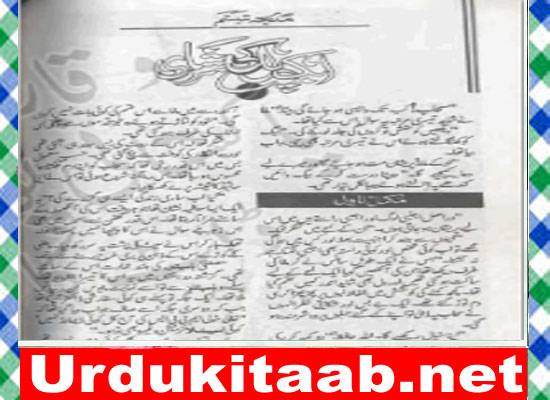 Aik Pal Ki Udasi Urdu Novel By Misbah Haani Download