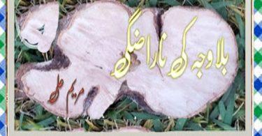 Bilawaja Ki Narazgi Urdu Novel By Maryeam Ali Download