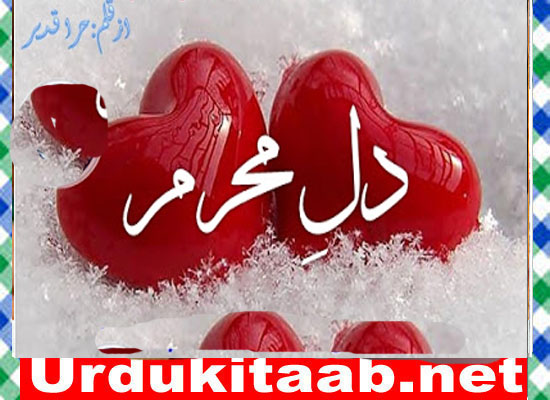 Dil E Mehram Urdu Novel By Hira Qadeer Episode 2 Download