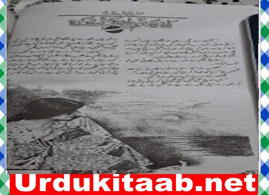 Haray Bhi To Bazi Maat Nahin By Shazia Jamal Tariq Download