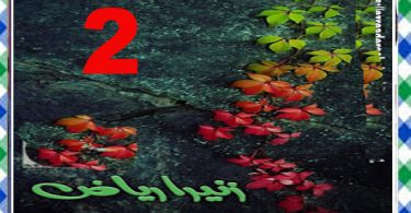 Jo Teri Raza Urdu Novel By Zunaira Riaz Episode 2 Download
