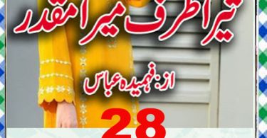 Tera Zarf Mera Muqaddar By Fahmida Abbas Episode 28 Download