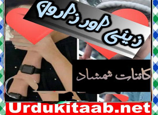 Zaini Aur Zaroon Urdu Novel By Kainat Shamshad Download