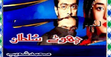 Chotay Sultan Urdu Novel By Muhammad Shoaib Download
