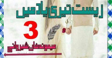 Zist Teri Yaad Main Urdu Novel By Memoona Khan Sherwani Episode 3 Download