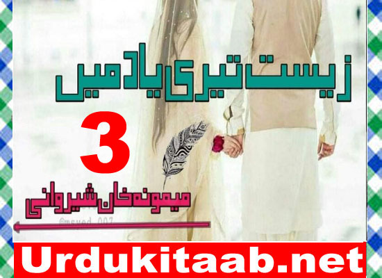 Zist Teri Yaad Main Urdu Novel By Memoona Khan Sherwani Episode 3 Download