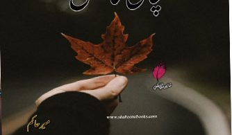 Sachai Ka Katal Urdu Novel By Meer Hakim