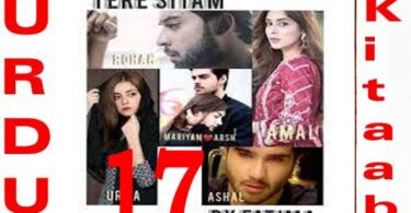 Tery Sitam Urdu Novel by Fatima Episode 17