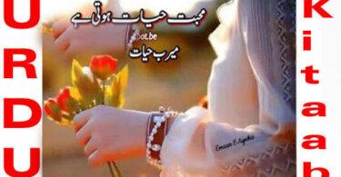 Mohabbat Hayat Hoti Hai By Meerab Hayat Complete Novel