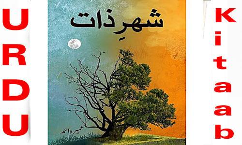 Sheher E Zaat By Umera Ahmed Urdu Novel