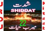 Shiddat Urdu Novel by Meerab Hayat Episode 22