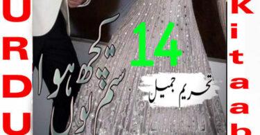 Sitam Kuch Youn Howa By Tehreem Jameel Urdu Novel Episode 14