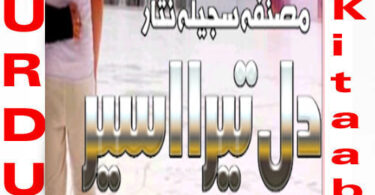 Dil Tera Aseer By Sajeela Nisar Urdu Novel Episode 14